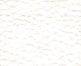 PVCouro Branco 0177